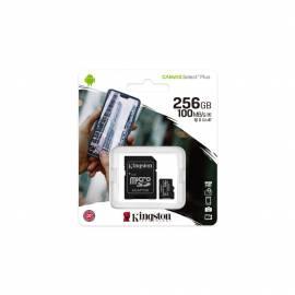 Carte microSD 256Go